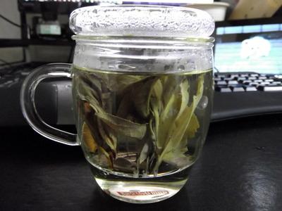 苦丁茶 2012-07-23 18-07-12