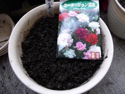 種蒔き3 2012-05-18 9-54-11