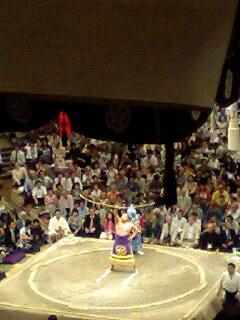 大相撲 マカロン