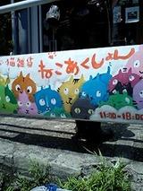 猫グッズ1