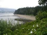 Third Beach9680