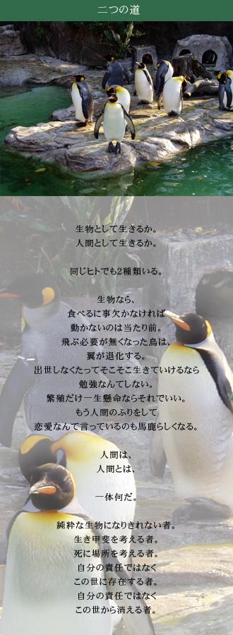 上野公園のペンギン