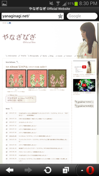 Screenshot_2013-07-25-20-30-20