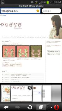 Screenshot_2013-07-25-21-18-30