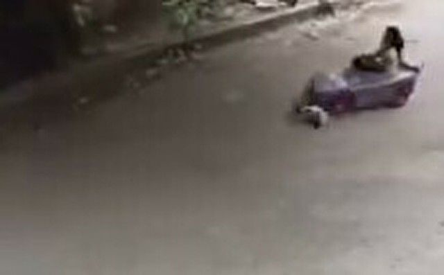 【動画】 ゴーカートに轢かれて跳ね飛ばされる猫が…カワイイww!!