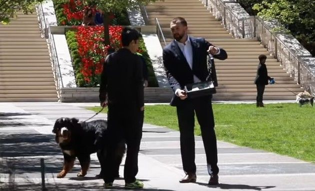 【動画】 いい犬ですね! そのイヌ1,000万円で売ってくれませんか!?