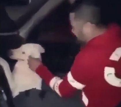 野良犬に激しい暴行をする最低の男【動画】