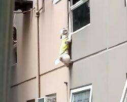 マンション3階で首吊り状態になっていたワンちゃんを救う映像。これはGJ動画。
