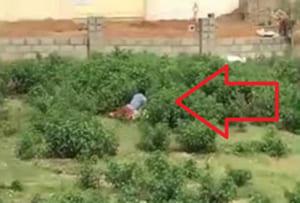 【動画】公園で男が♀をレ●プしてたので晒す・・・その相手がまさかの・・・