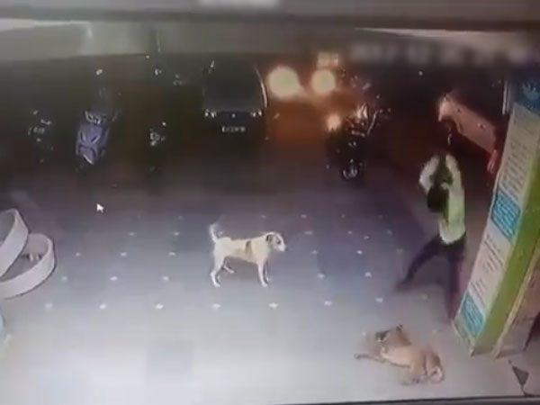狂ったように犬を殴り殺すインド人・・・(動画)