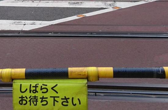 【閲覧注意】日本の踏み切りで撮影された電車グモの写真一枚。