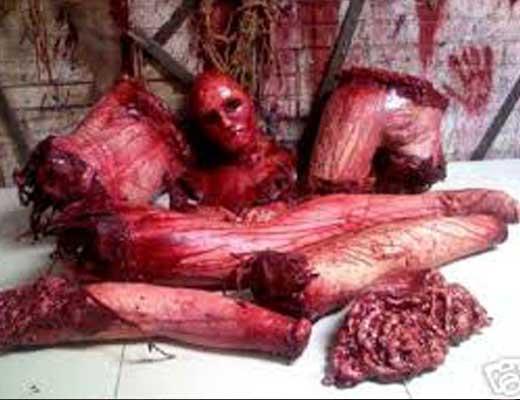 【未解決事件】井の頭公園バラバラ殺人事件とか死体から一滴残らず血が抜かれてバラバラとか闇深過ぎやろ・・・