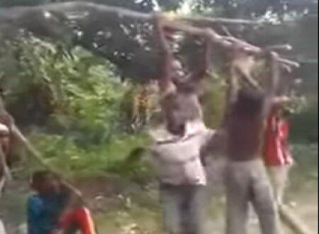 【悲報】アフリカ人の若者、木の枝にぶら下がり空を飛ぶwww