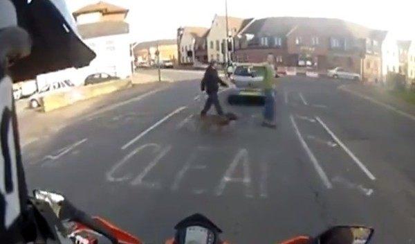 交通ルールは大切だワン!! 目の前で飼い主が車に撥ねられる交通事故!!
