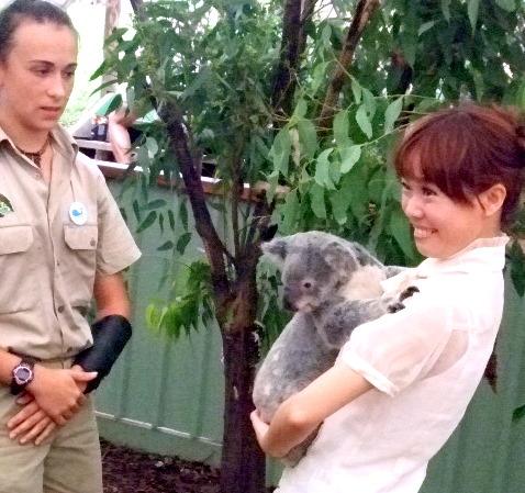 美少女とおねむなコアラちん