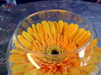 グラスオブお花