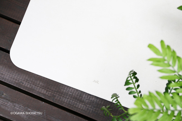 170702_ogawa_0362