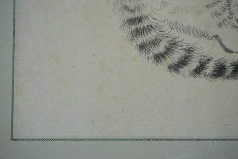 DSC04096