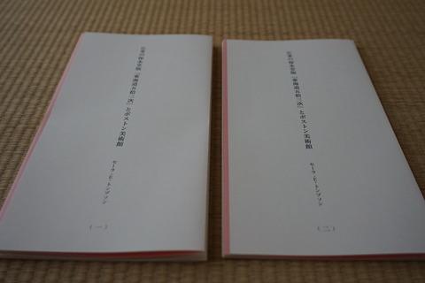 DSC08242