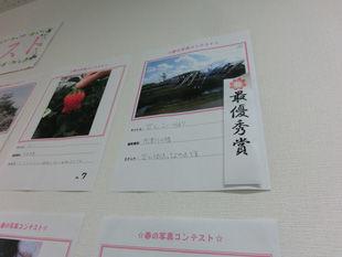 春の写真-(1).jpg