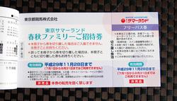 東京都競馬 (2)