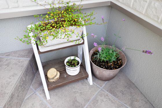 玄関のアプローチ 植栽