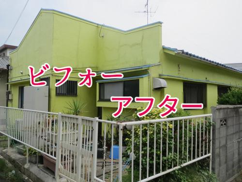 IMG_0131-2