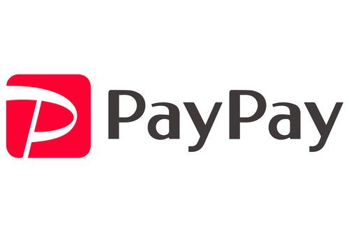 paypay_logo2