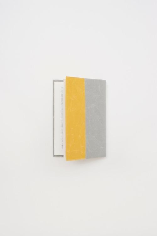 SIWA_book_cover_yxg[1]