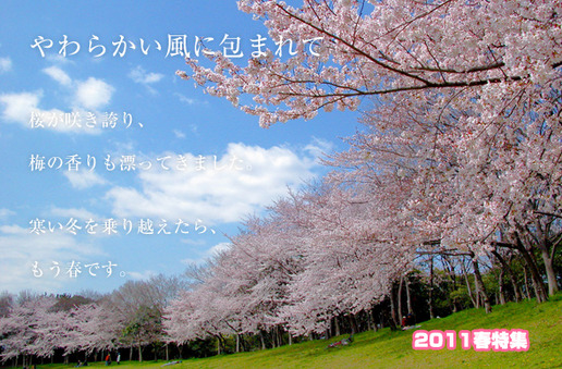 2011haru[1]