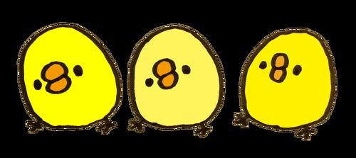 2017062902