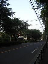 38c329b6.jpg