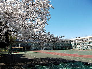 滝野川第五小学校