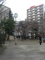 db2ae261.jpg