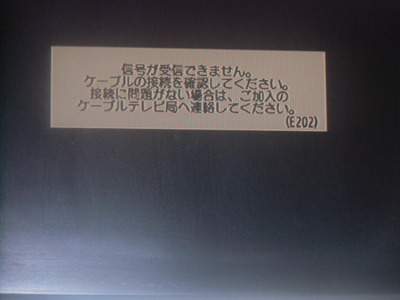 14061603