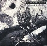 DAVID SYLVIAN/Secrets of the Beehive