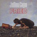 JULIAN COPE / Fried