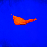 NEW ORDER / True Faith