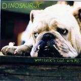 DINASAUR Jr / Cool With Me CDs