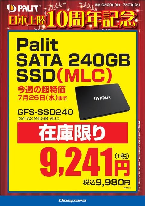 Palit10th_SSD