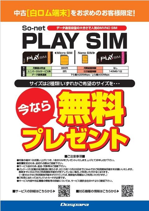 Playsim_2