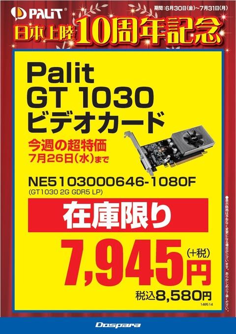 Palit10th_VGA