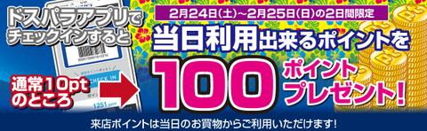 20180202_パラダイスセールバナー180224-0225