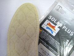 goods-pedag-solar3.jpg