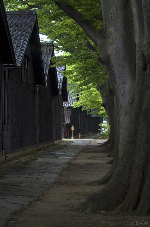 2013_yamagata_004