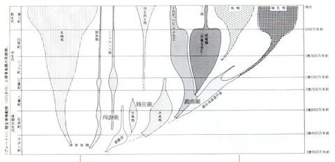 爬虫類系統図