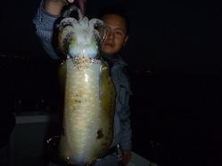 2010_1106将軍丸10001