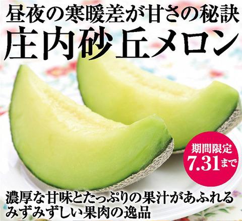melon_blog