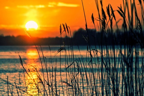 lake-696098_1920