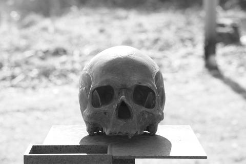skull-2284177_1920